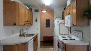 Typical Rental Galley Style Kitchen.