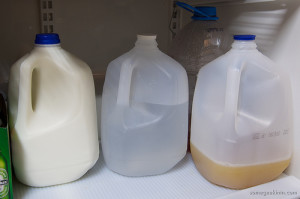 gallons of milk, bottled water and juice.