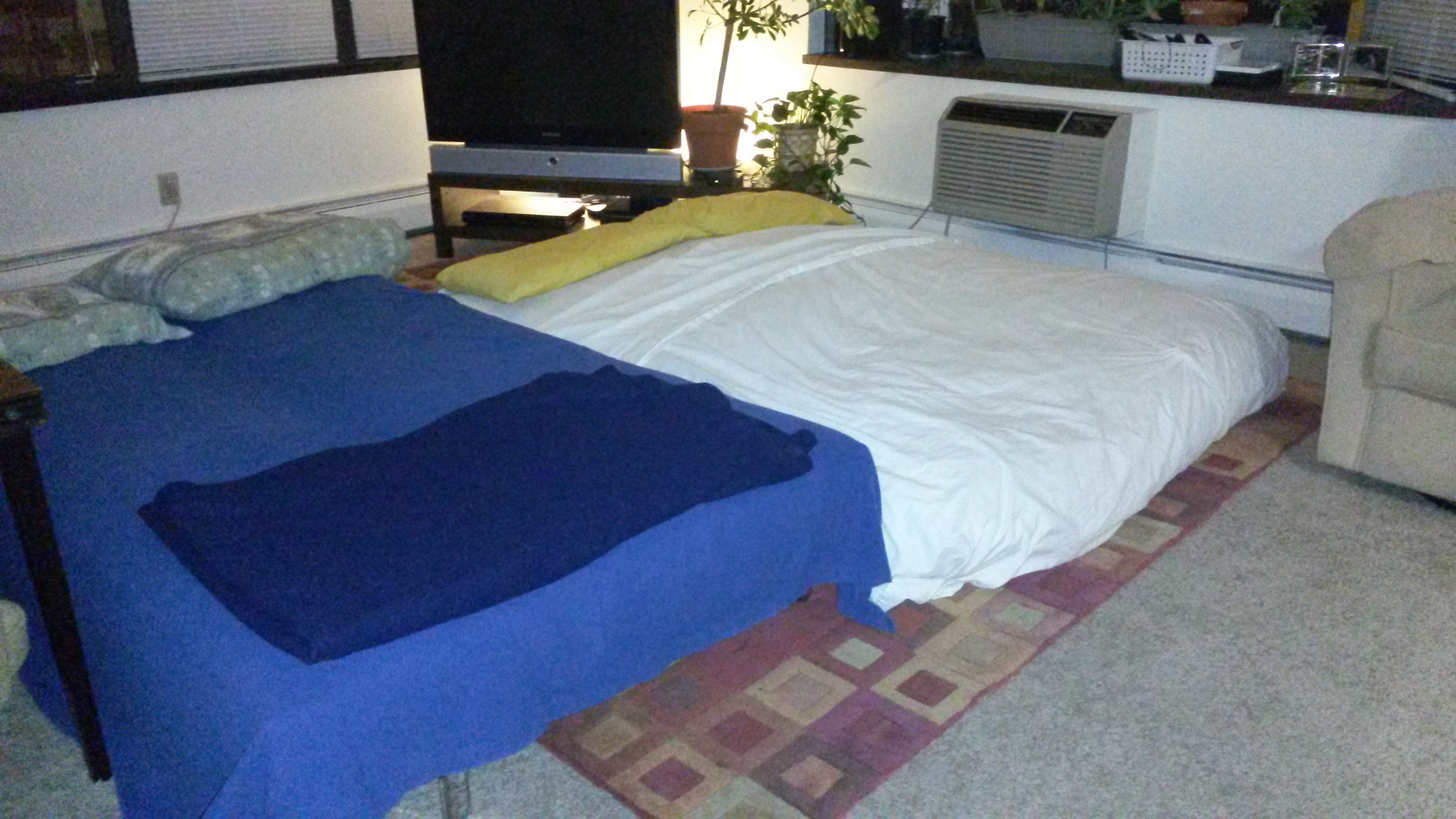 Guest Beds In The Living Room